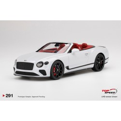 TOP SPEED TS0291 BENTLEY Continental GT Convertible Ice