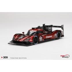 TOP SPEED TS0309 MAZDA RT-24P DPi N°55 Mazda Team Joest IMSA Vainqueur 12H Sebring 2020 J. Bomarito -
